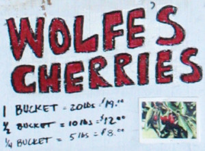 Wolfe's Cherries, inexpensive organic ripe and delicious