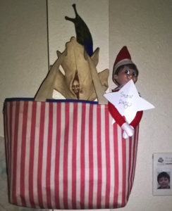 Elf in a bag