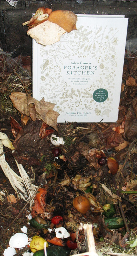 Censorship: Cover of Tales from a Forager's Kitchen, by Johnna Holmgren