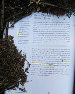 Censorship: Fungus from Tales from a Forager's Kitchen, by Johnna Holmgren