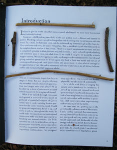 Censorship: Introduction of Tales from a Forager's Kitchen, by Johnna Holmgren